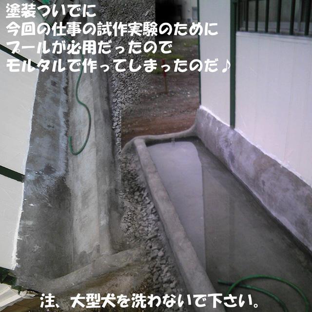 モルタル水槽 640