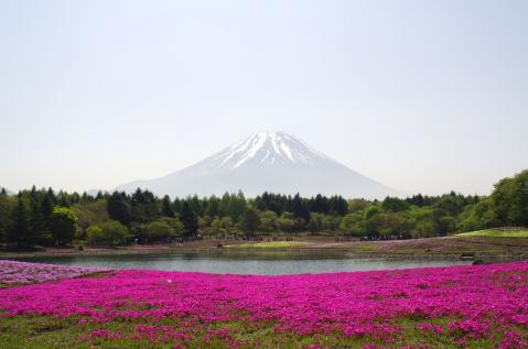 fuji1105001.jpg