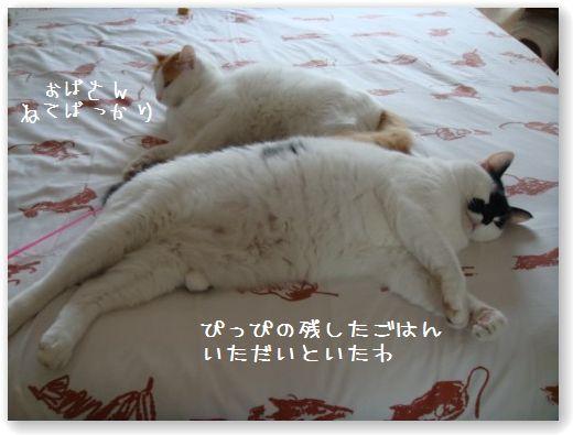 goma pippi sul letto