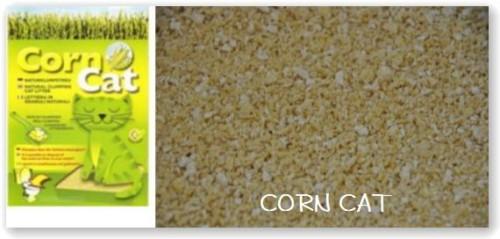 corn cat-