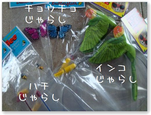 DSC07801_20091225030926.jpg