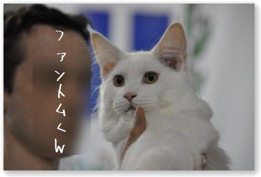 DSC_0067_20100923051543.jpg