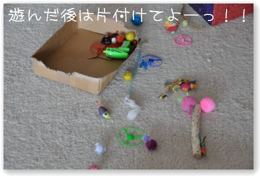 DSC_0102_20100422212449.jpg