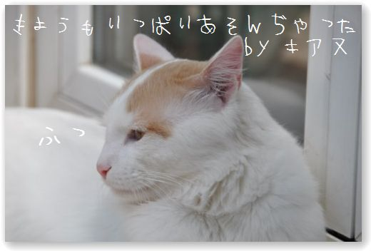 DSC_0148_20100420015338.jpg