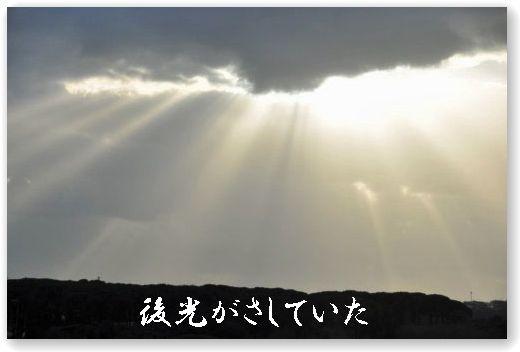 DSC_0178_20100212035932.jpg