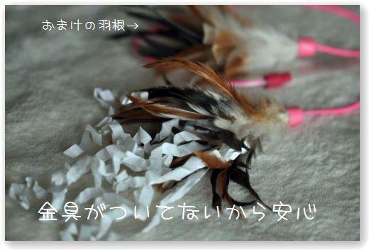 DSC_0178_20100420013003.jpg