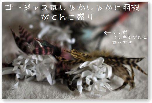 DSC_0186_20100420013003.jpg