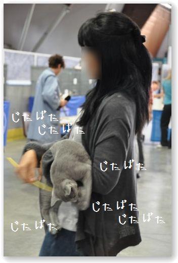 DSC_0288_20100812010958.jpg