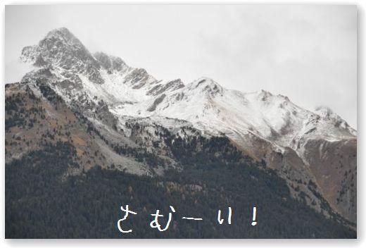 DSC_0811_20101104083236.jpg