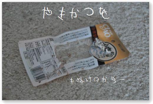DSC_0838_20101112033349.jpg