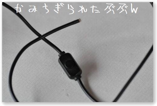 DSC_1002_20101024014757.jpg