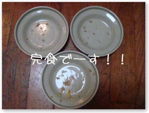 TASTE5_20091130180436.jpg