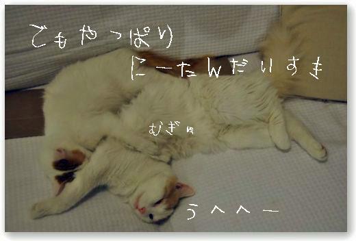 bakusui3_20100308235700.jpg