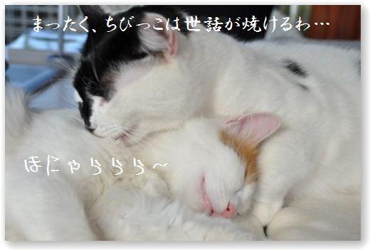 bakusui5.jpg