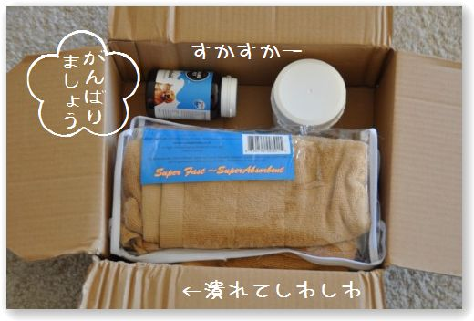 pacco2.jpg