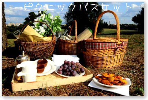 picnic_deluxe.jpg