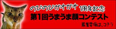 umauma-banner.jpg