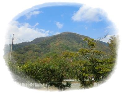 2011玄倉キャンプ6