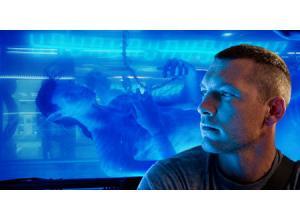 avatar011.jpg