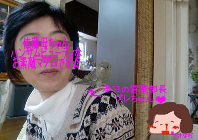 201204032201472e8.jpg