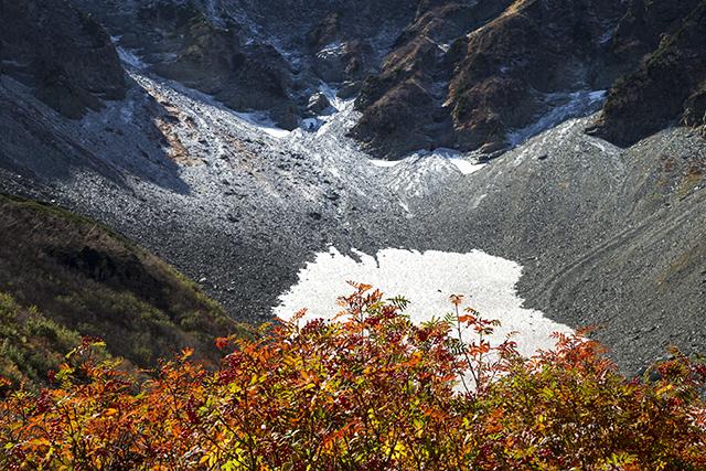 131013 ナナカマドと新雪
