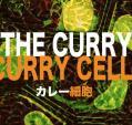 カレー細胞(ropefish)