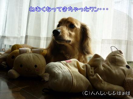 おもちゃのチャチャチャ1