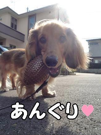 くわえ顔4