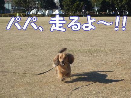 浦安運動公園1