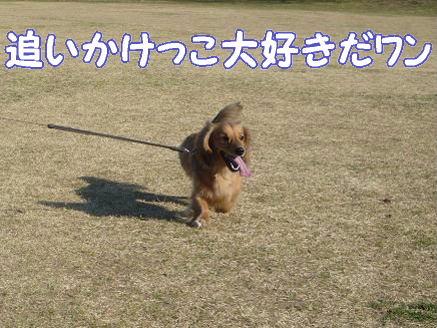 浦安運動公園2