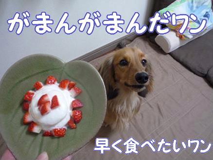 お誕生日会3