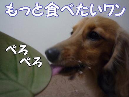 お誕生日会4