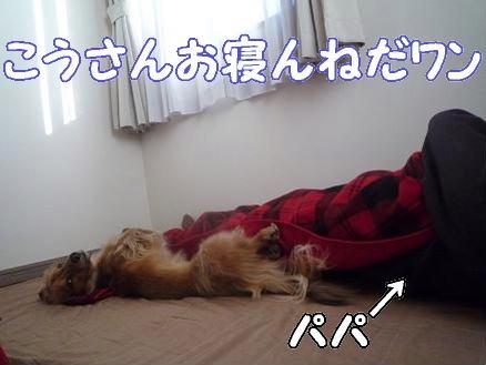 パパと添い寝1