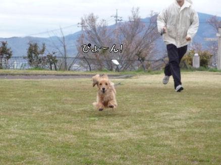しょっぱなから飛行犬(長野旅行報告1)1