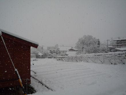 雪嫌い、返上! (旅行報告3)1