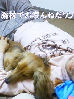 パパと添い寝3