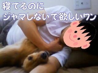 パパと添い寝4