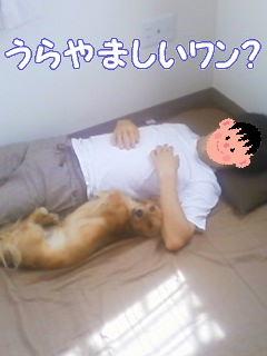 パパと添い寝5