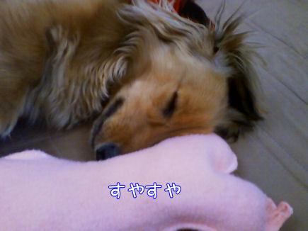 ピンクのお骨5
