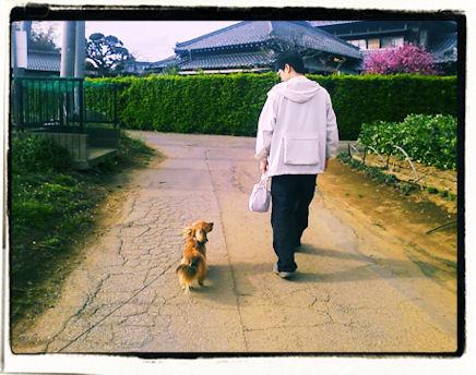 お散歩でご機嫌とり1