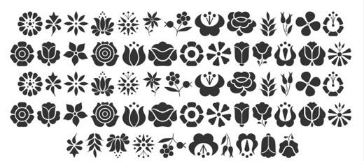 Kaloscai Flowers