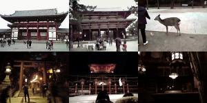 奈良初詣写真(その2)