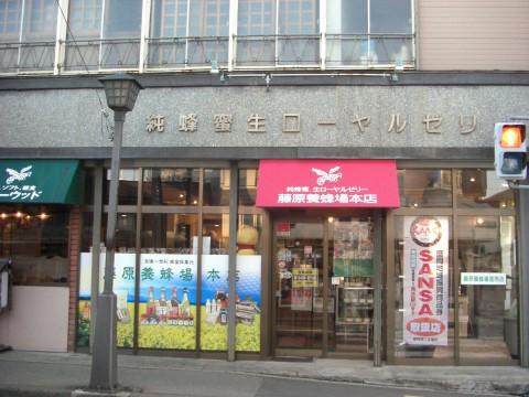 fujiwara.jpg