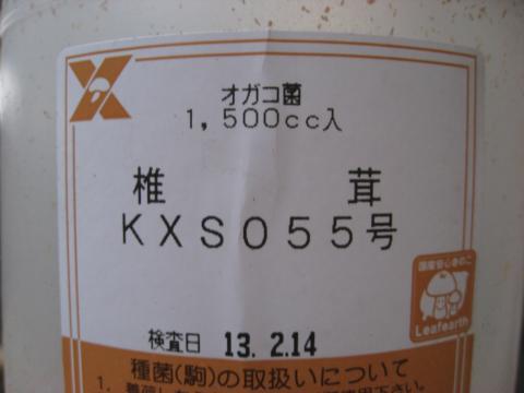IMG_3782_縮小