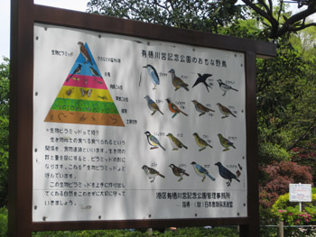 有栖川記念公園