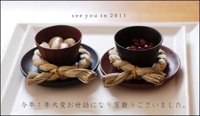 seeyouin2011.jpg