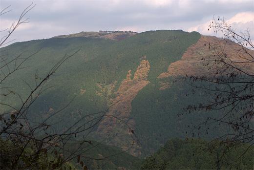 20091121-5.jpg