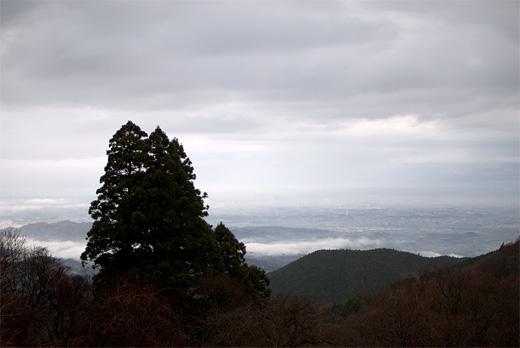 20091205-7.jpg