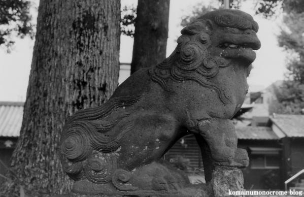 烏山神社(世田谷区南烏山)7