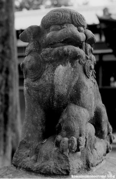 烏山神社(世田谷区南烏山)6